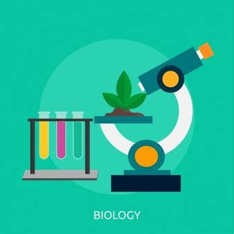 Research studies on molecular biology